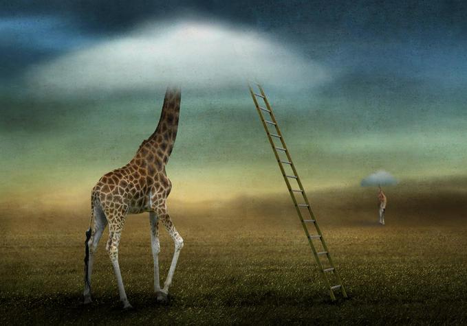 Фото-галлюцинации от Ben Goossens