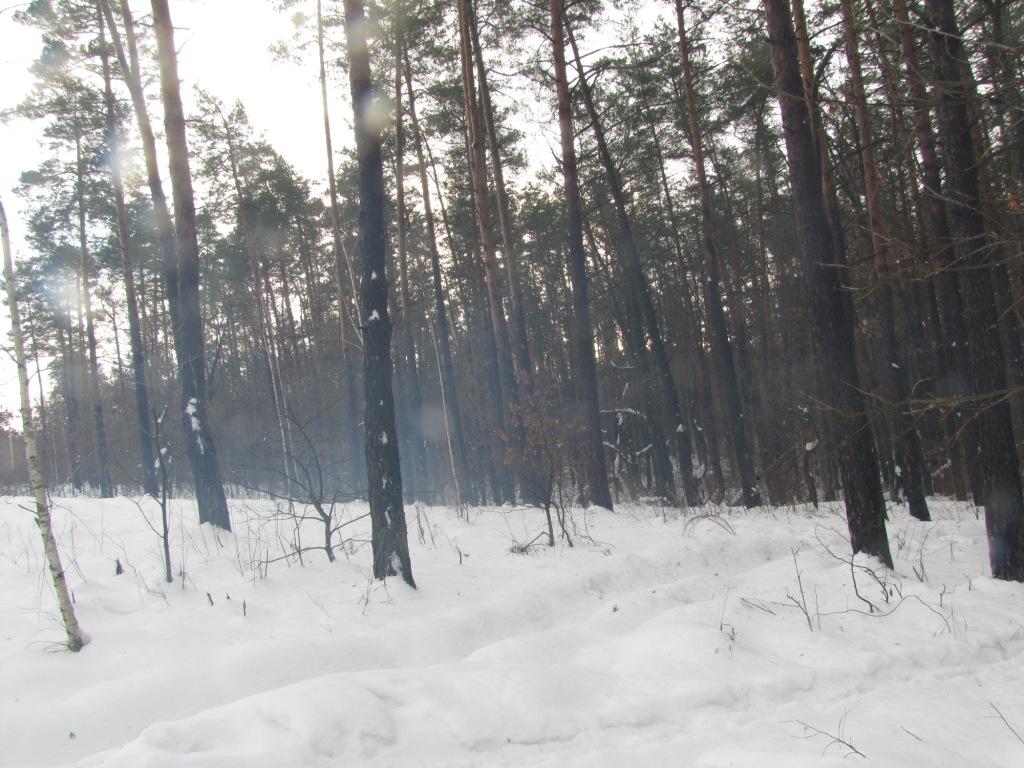 Дым после взрыва