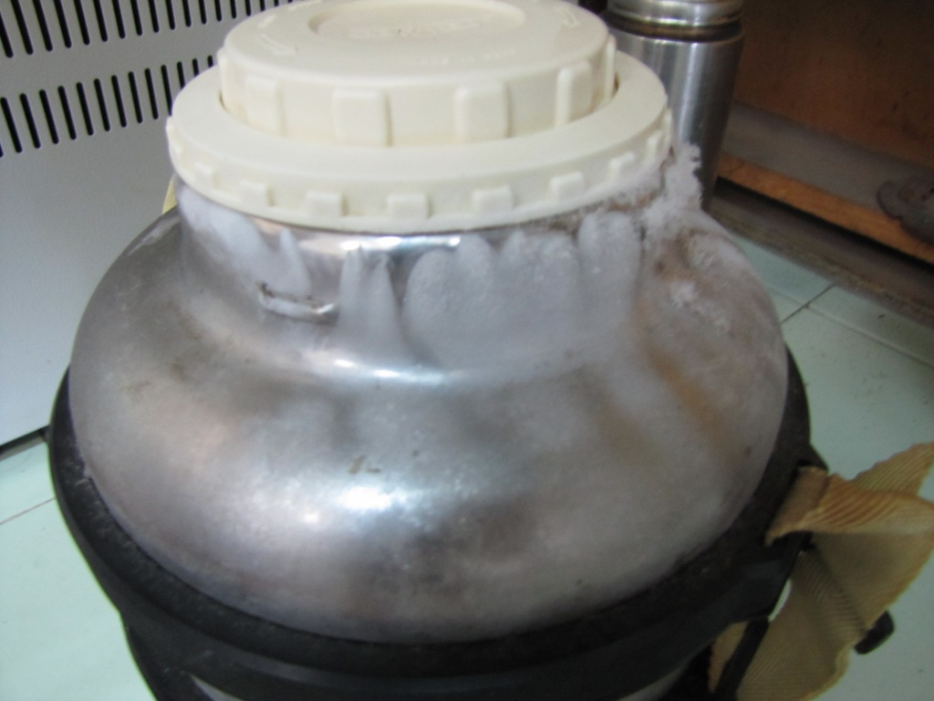 Термос с жидким азотом