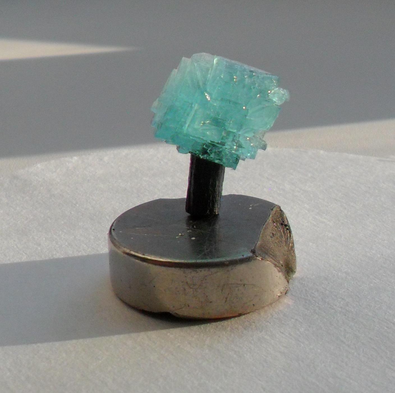 Этот же кристалл, вынутый из раствора. Диаметр магнита около 3 см