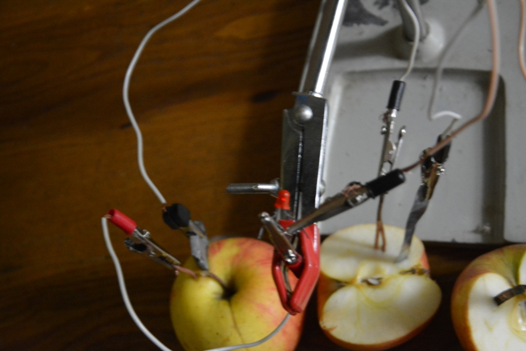 Фруктовая батарейка (из яблок) и светодиод