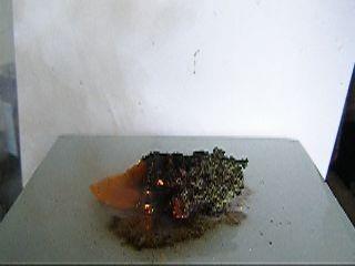 Горение смеси: бихромат калия, нитрат калия, сахар