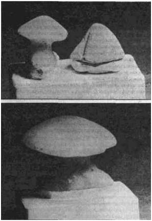 Зеленые камни в форме грибов из местечка Винца. Из книги Марии Гимбутас ''Богини и боги старой Европы'' (Berkeley: University of California Press. 1982)