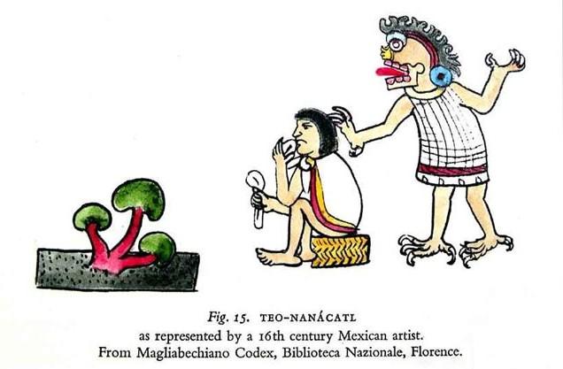Рисунок из ацтекского Кодекса Мальябекки (XVI в.) Изображен бог смерти Миктлантекутли и некто поедающий ''плоть богов'' - псилоцибинсодержащие грибы (теонанакатль)
