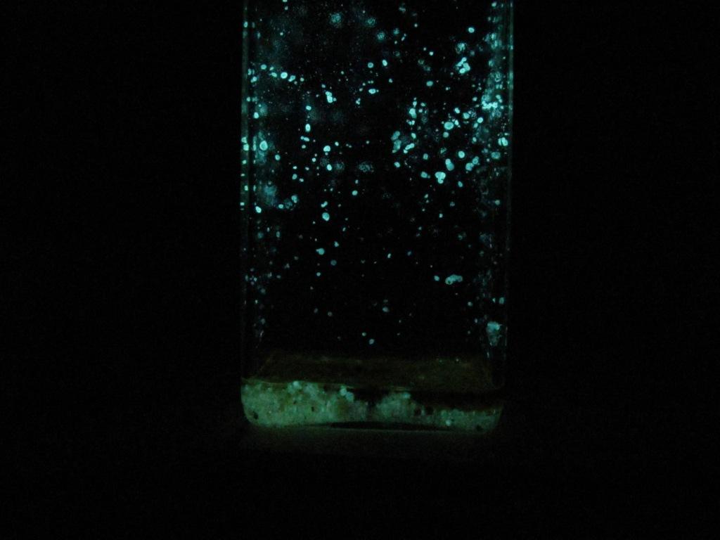 Свечение люминола в среде диметилсульфоксида