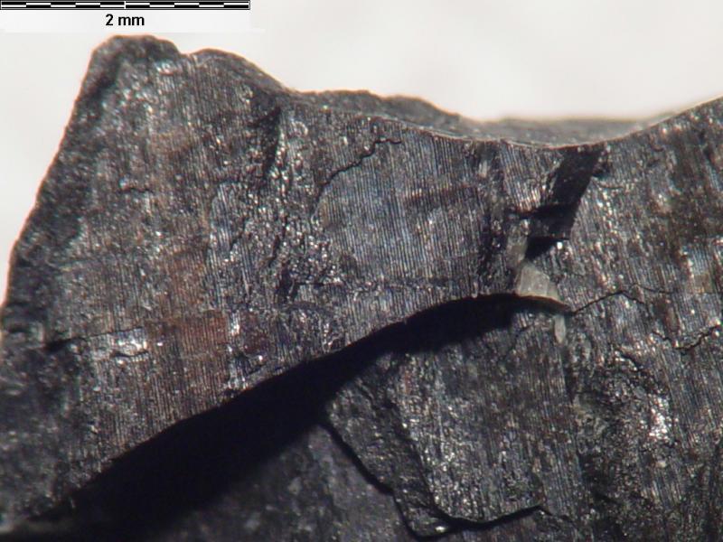 Урановая руда содержит актиний