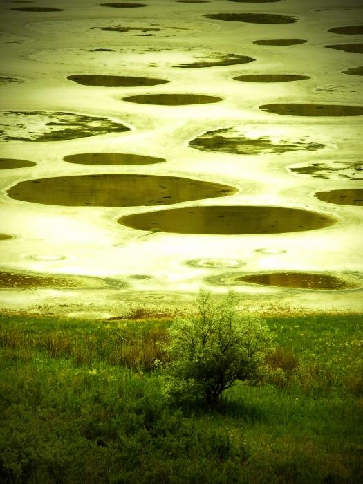 Споттед-Лейк - ''Пятнистое озеро''. Spotted Lake