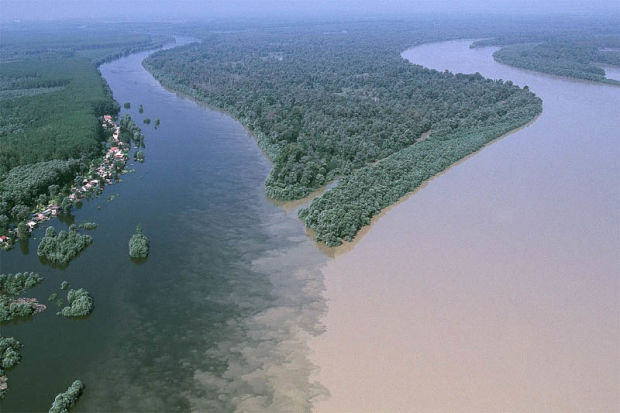 Слияние рек Драва и Дунай (Осиек, Хорватия). Confluence of Drava and Danube rivers (Osijek, Croatia)