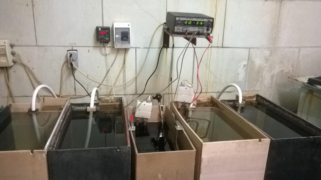Ванна золочения. Gold plating bath