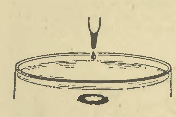 Вихревые кольца