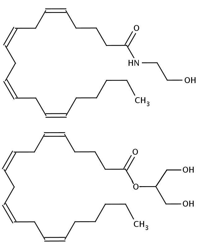 Каннабиноиды эндогенного происхождения:  анандамид (этаноламид арахидоновой кислоты) и 2-глицерид арахидоновой кислоты