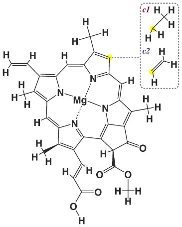 Структура хлорофилла c1 и c2