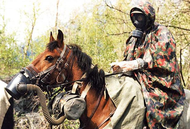 Противогаз для лошади