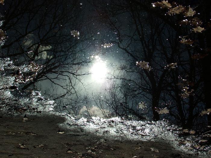 Отражение осеннего солнца в луже