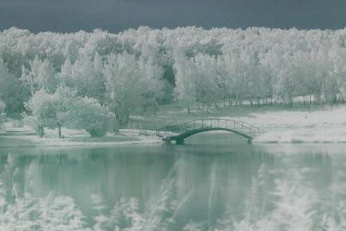 Фотография в инфракрасном свете