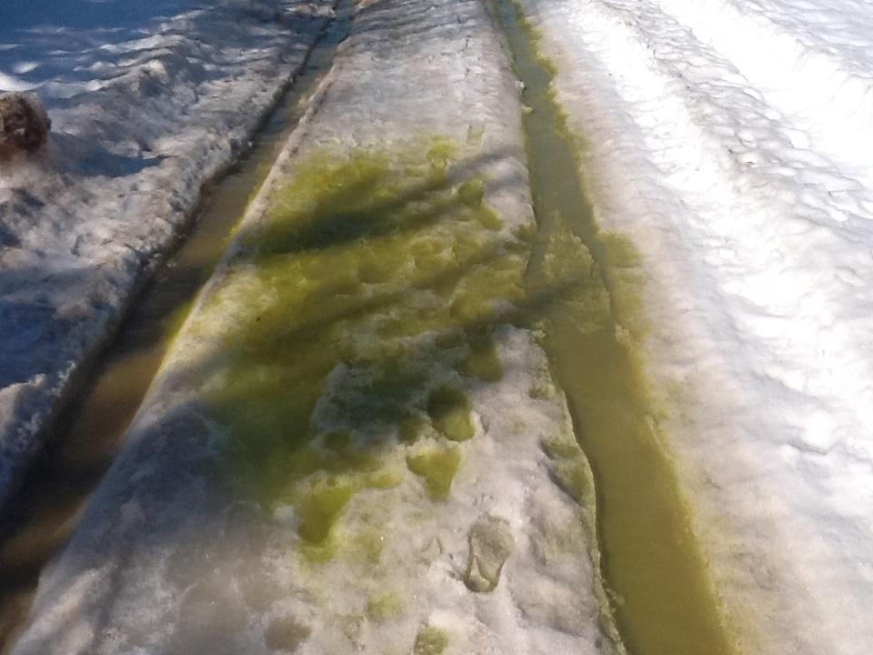 Зеленый ручей (флуоресцеин)