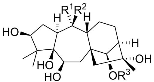 Андромедотоксин