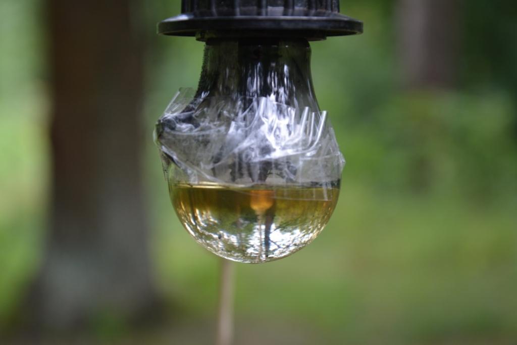 Электрическая лампа и бензол
