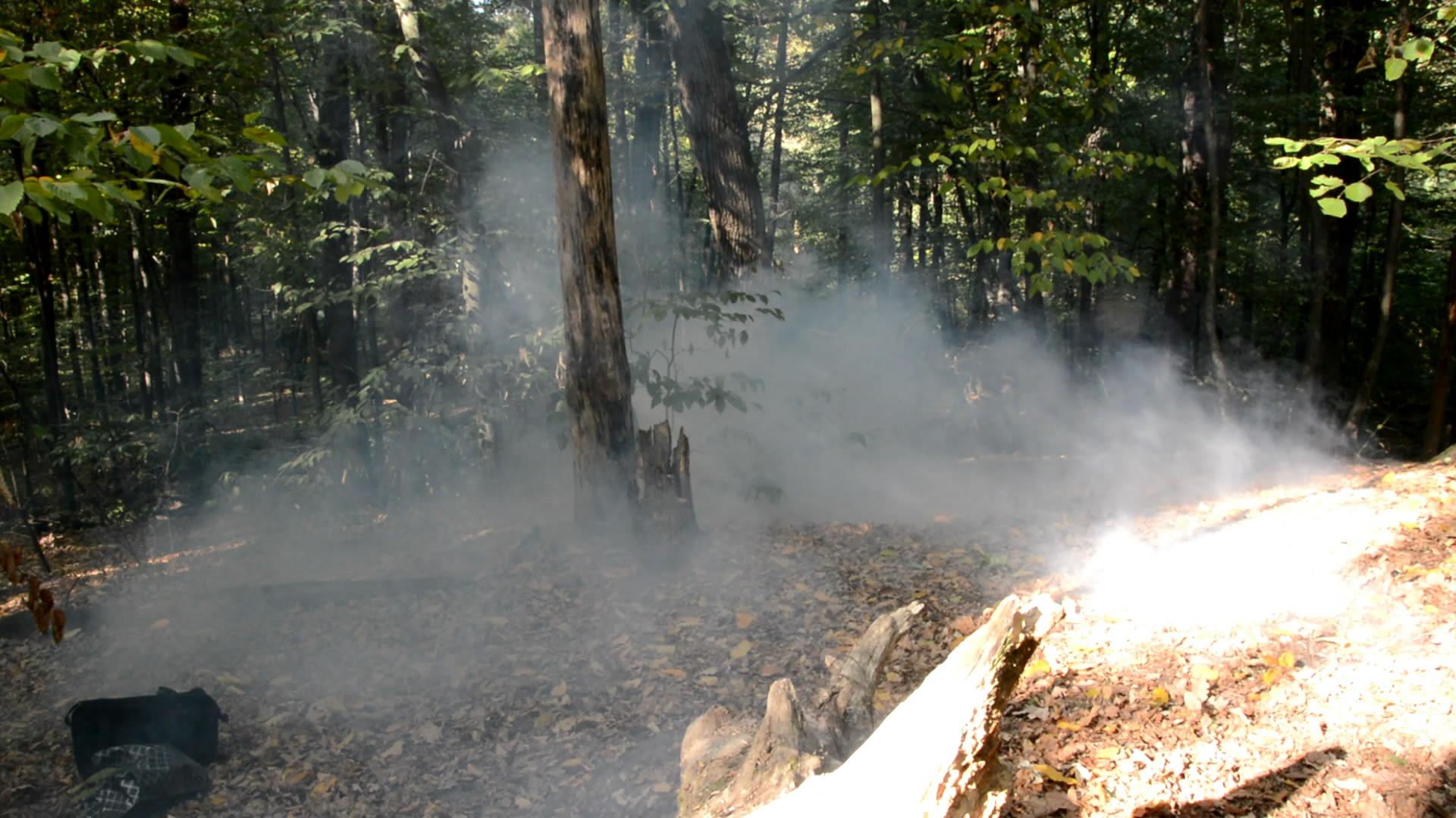 Туман в лесу (реакция соляной кислоты и аммиака) / Reaction of Hydrochloric Acid and Ammonia