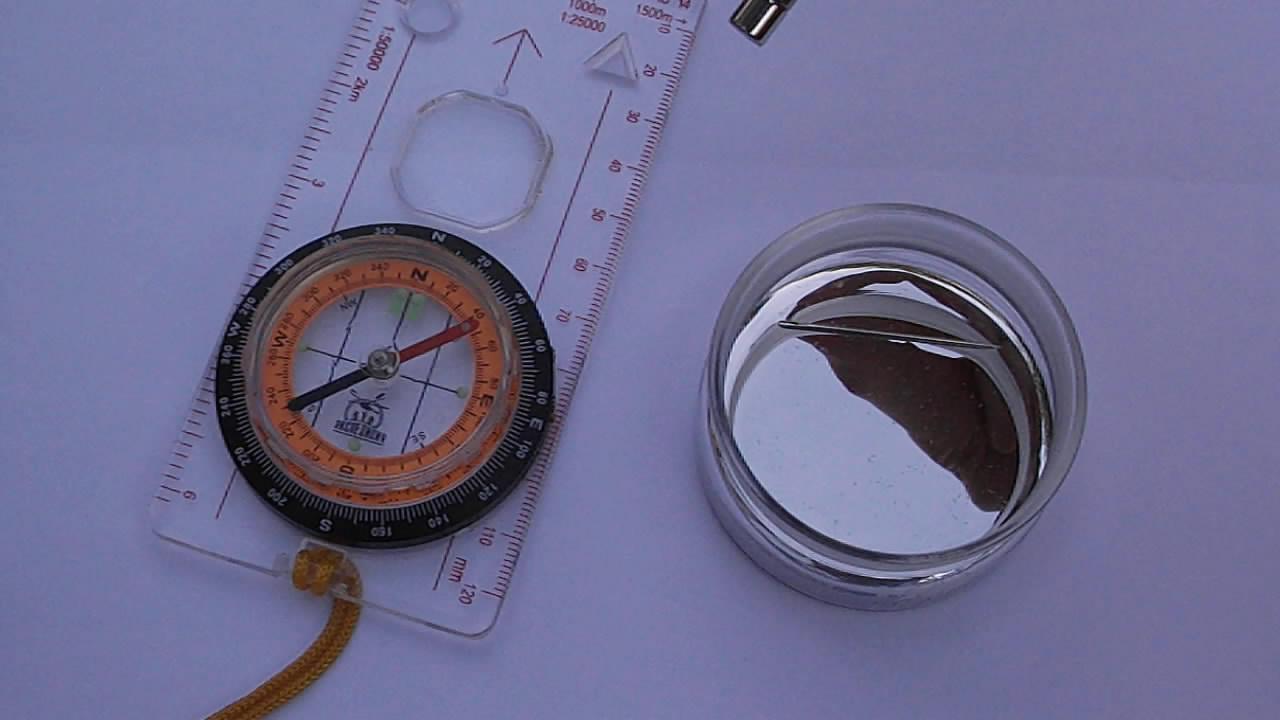 Ртутный компас / How to make magnetic compass from metallic mercury and needle