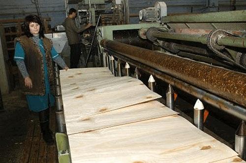 Спичечная фабрика. Лущильный станок - изготовление шпона