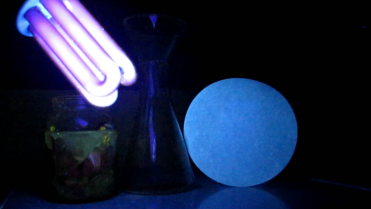 Чистотел, фильтровальная бумага и ультрафиолетовый свет (люминесценция). Chelidonium, filter paper and ultraviolet light (luminescence)
