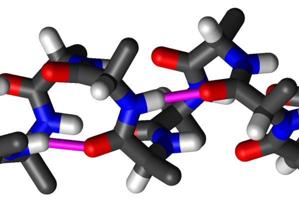 Так выглядит альфа-спираль полипептидной цепи из молекул аминокислоты аланина (на рисунке показан каждый атом)