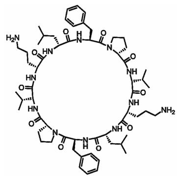 Структура молекулы грамицидина С
