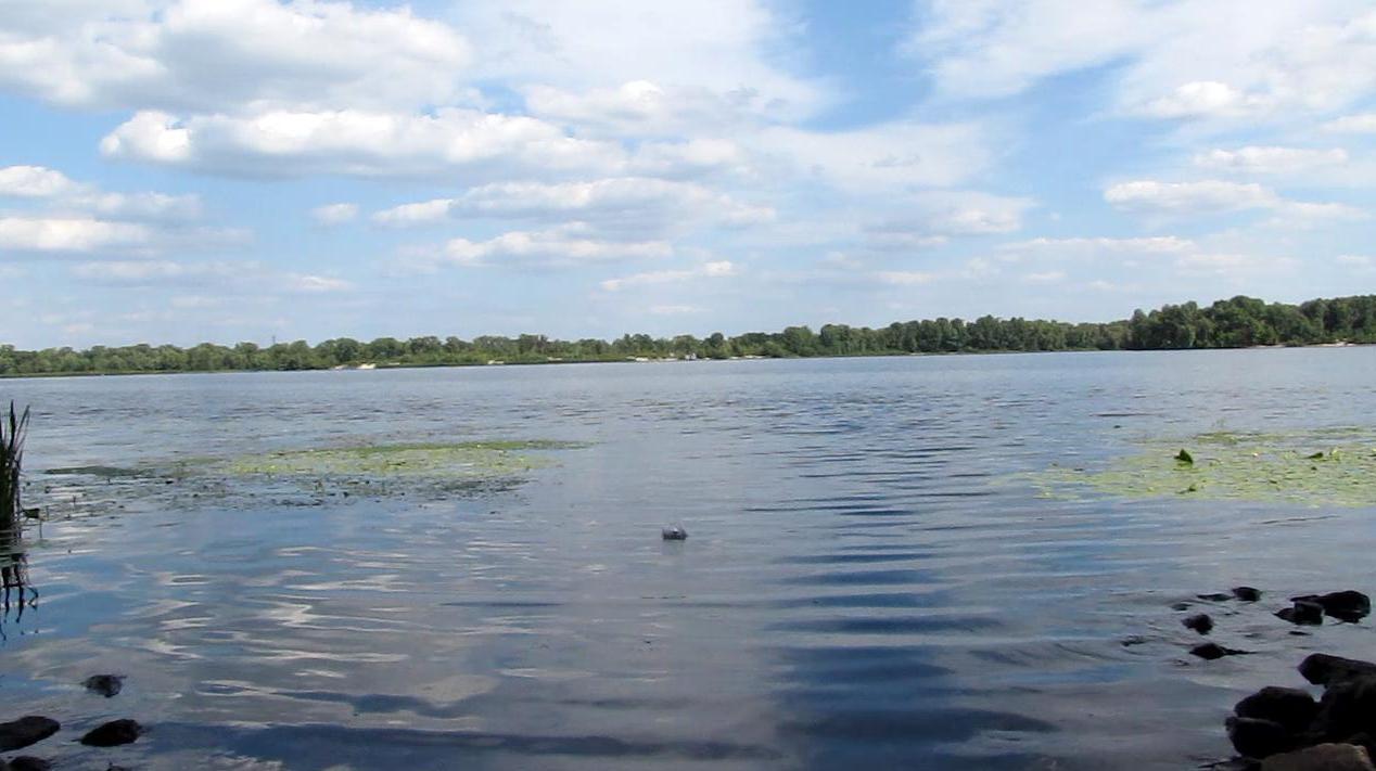Реакция калия с водой (р. Днепр)