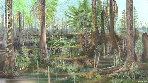 Лес каменноугольного периода
