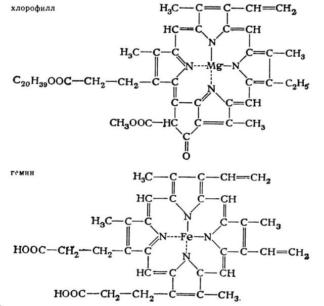 Хлорофилл и гемин