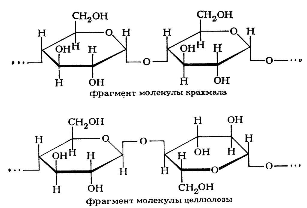 строении молекул.
