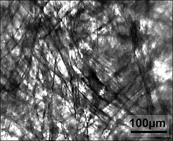 Бумажный фильтр под микроскопом