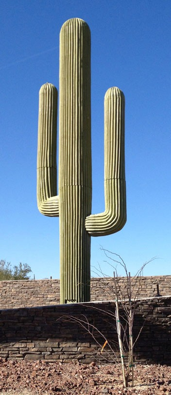 Пустыне Сонора, она же - пустыня Хила (англ. Sonoran Desert; исп. Desierto de Sonora) - пустыня в Северной Америке, которая находится на территории США и Мексики