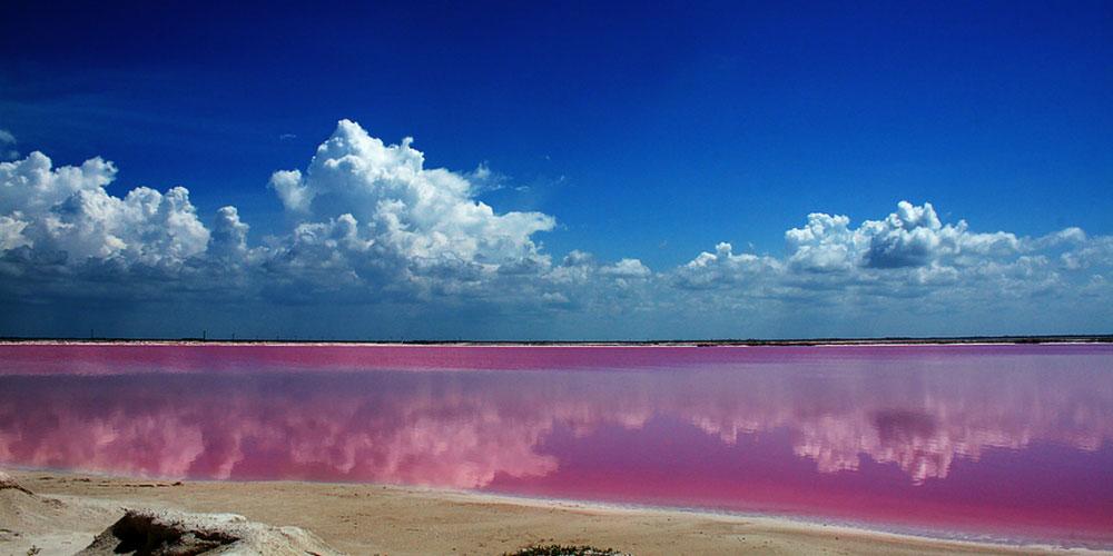 Розовая лагуна Las Coloradas. Pink lagoon Las Coloradas