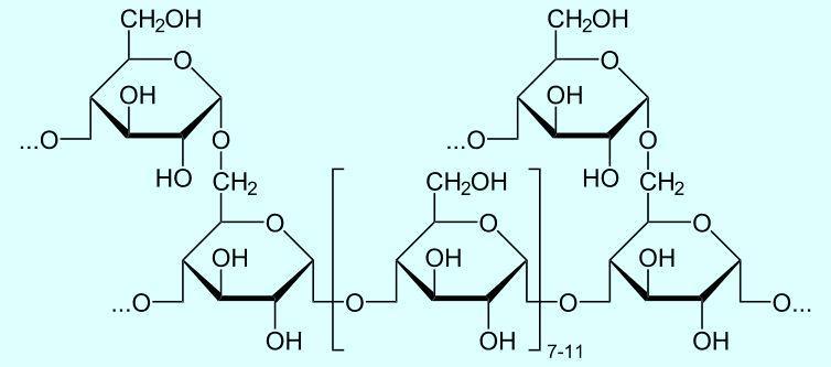 Строение молекулы гликогена