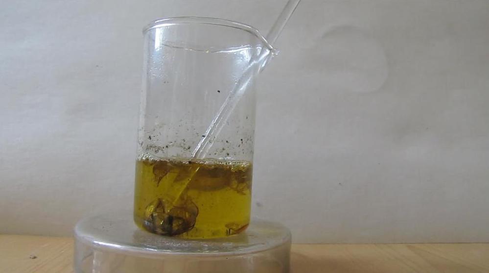 Растворение раковин моллюсков в соляной кислоте