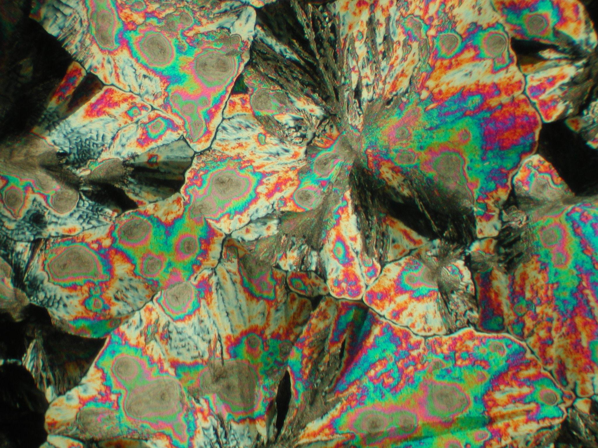 Ванилин (пищевой), поляризационный микроскоп