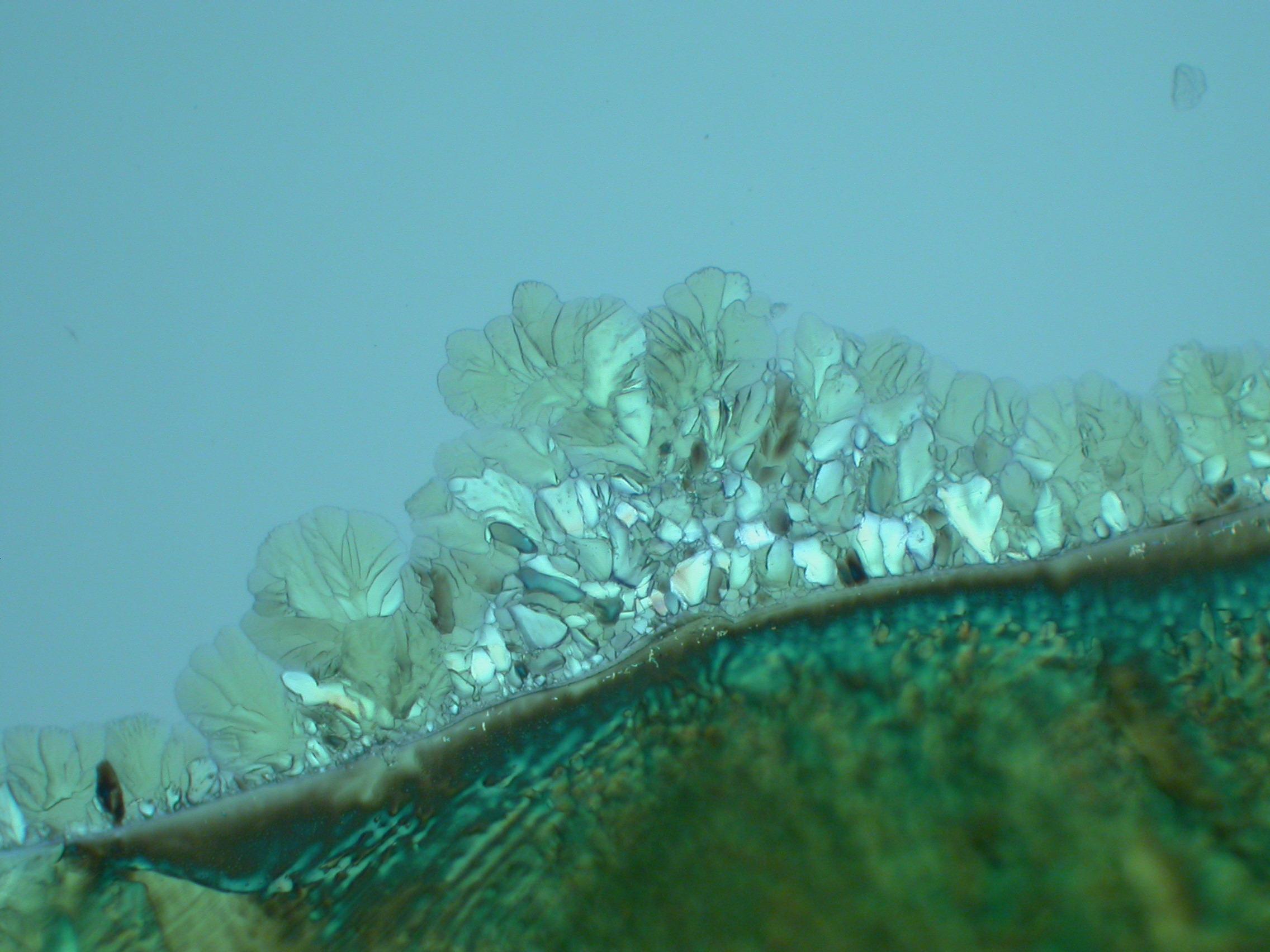 Пикриновая кислота, поляризационный микроскоп